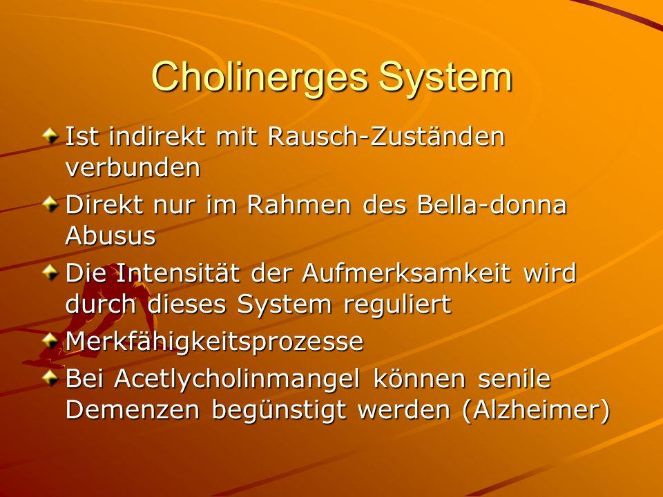 Cholinerges System Ist indirekt mit Rausch-Zuständen verbunden