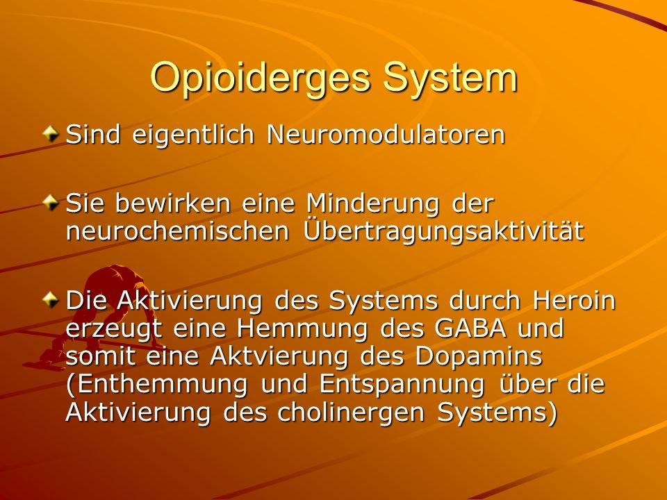 Opioiderges System Sind eigentlich Neuromodulatoren