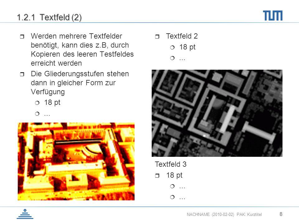 1.2.1 Textfeld (2) Werden mehrere Textfelder benötigt, kann dies z.B, durch Kopieren des leeren Testfeldes erreicht werden.
