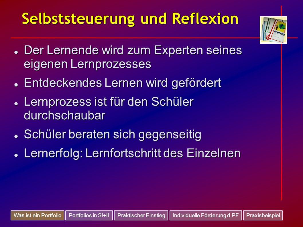 Selbststeuerung und Reflexion