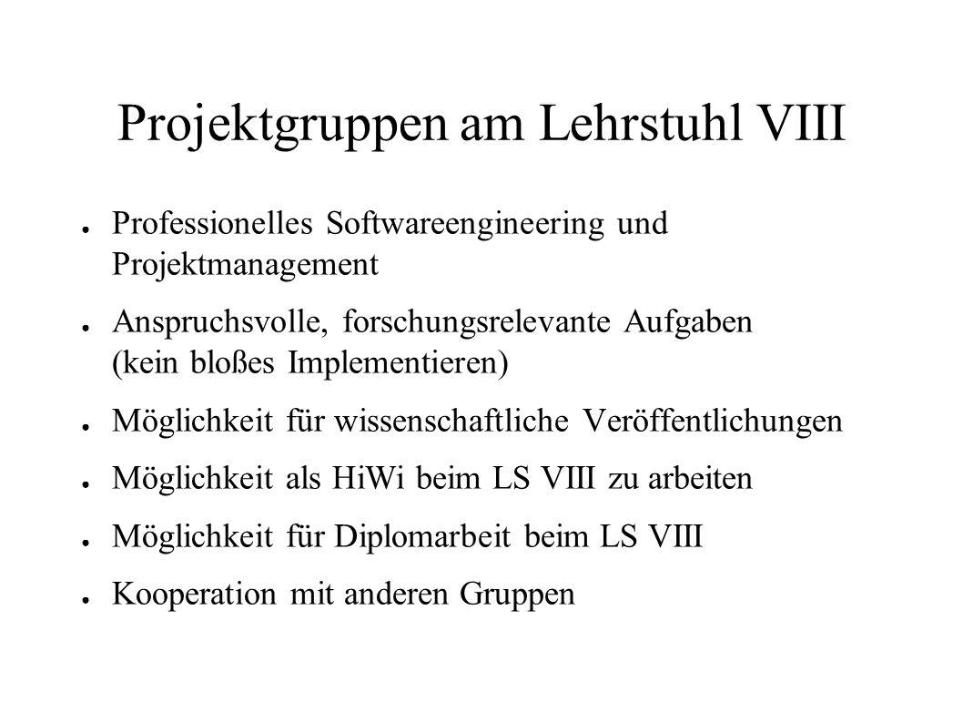 Projektgruppen am Lehrstuhl VIII