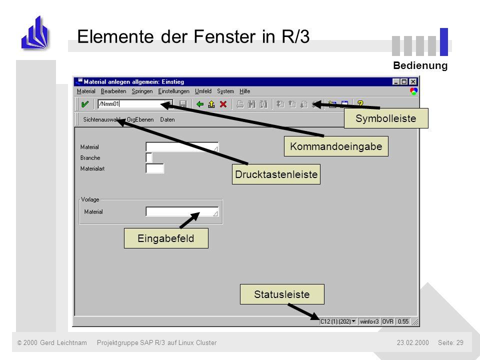 Elemente der Fenster in R/3