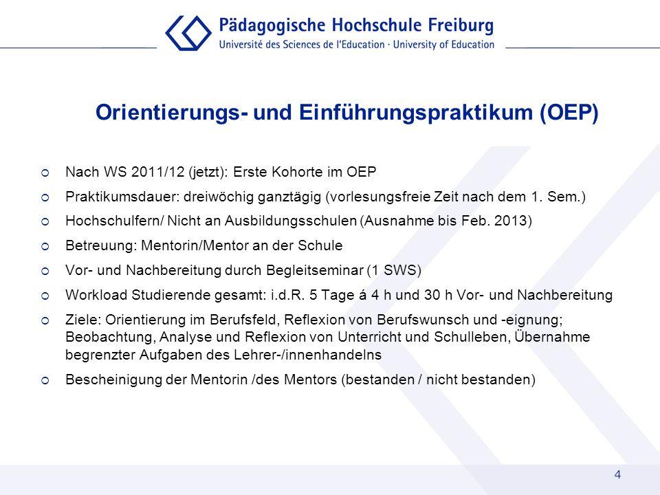 Orientierungs- und Einführungspraktikum (OEP)