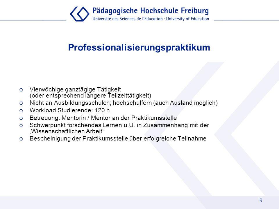 Professionalisierungspraktikum