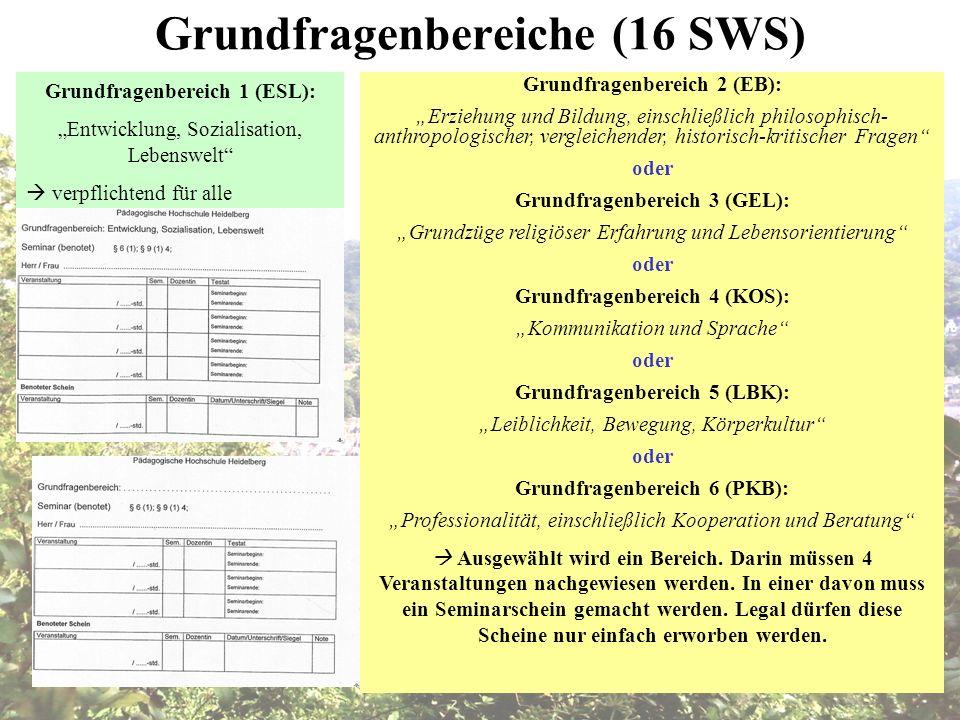 Grundfragenbereiche (16 SWS)