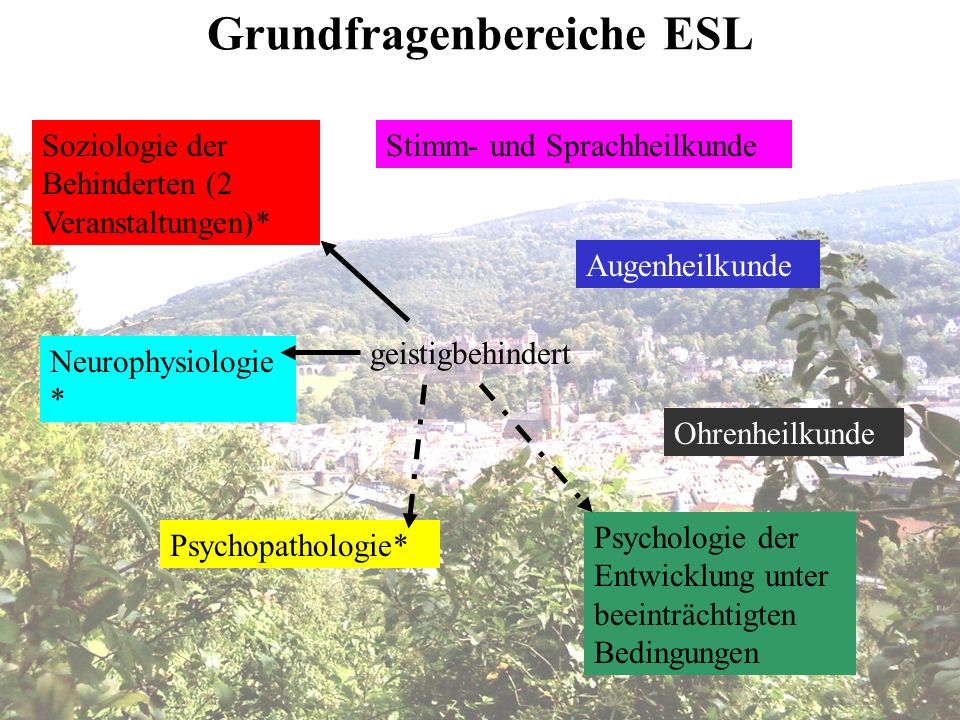 Grundfragenbereiche ESL