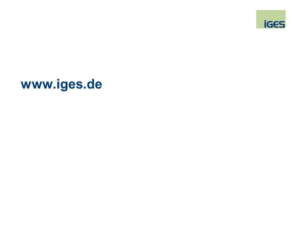 www.iges.de