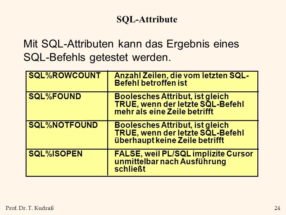 SQL-Attribute Mit SQL-Attributen kann das Ergebnis eines SQL-Befehls getestet werden.