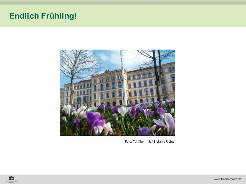 Endlich Frühling! Foto: TU Chemnitz / Stefanie Richter