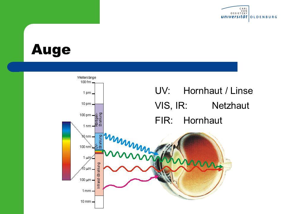 Auge UV: Hornhaut / Linse VIS, IR: Netzhaut FIR: Hornhaut