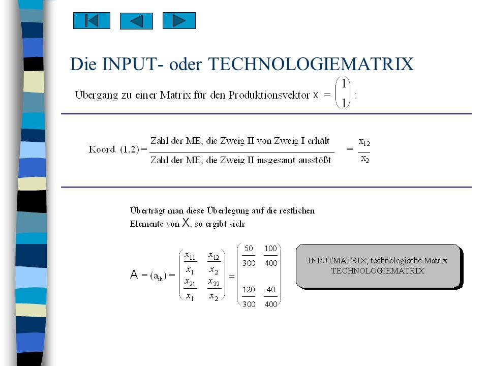 Die INPUT- oder TECHNOLOGIEMATRIX