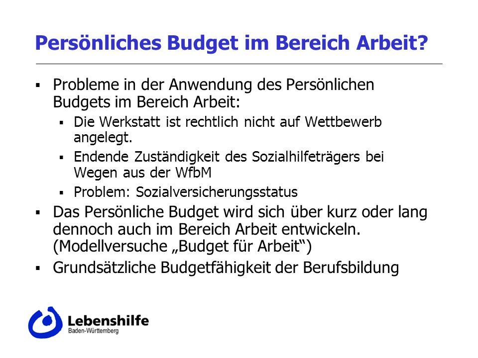 Persönliches Budget im Bereich Arbeit