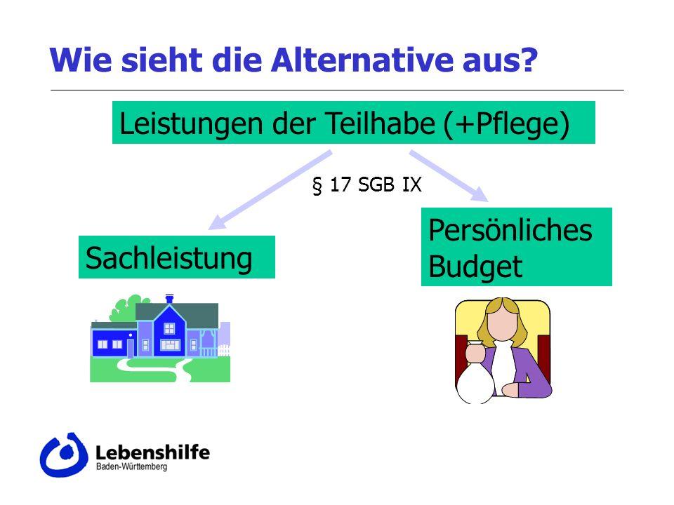 Wie sieht die Alternative aus