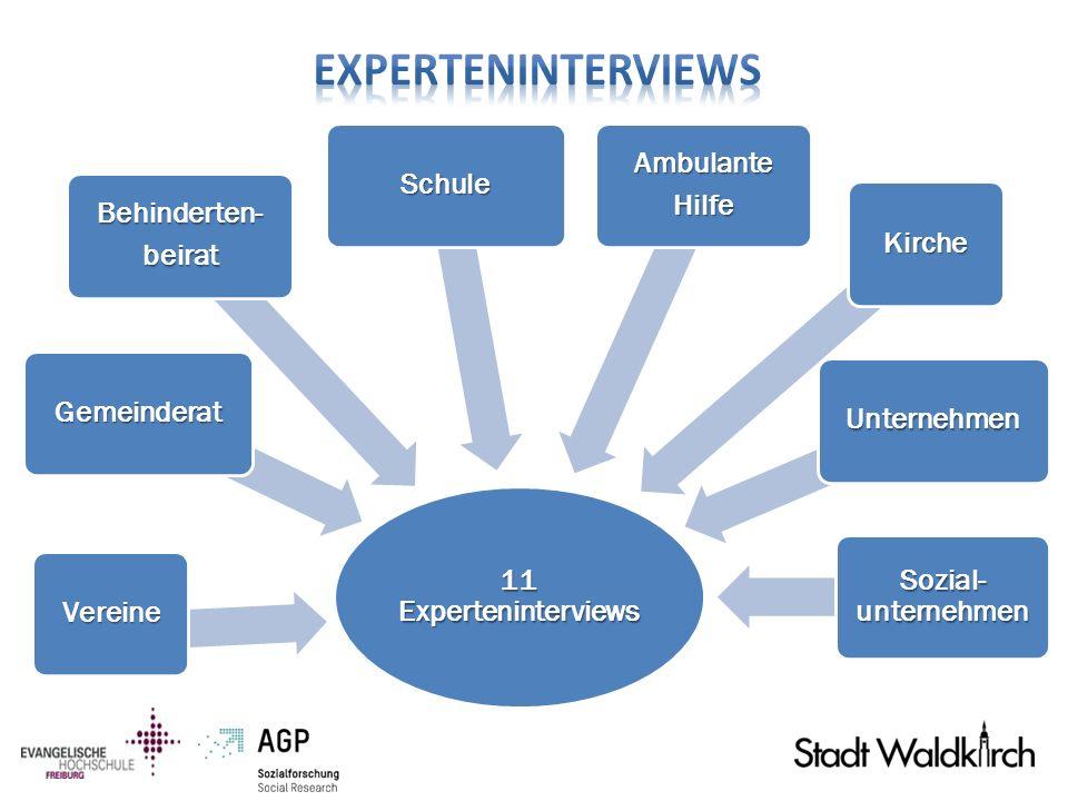 Experteninterviews 11 Experteninterviews Vereine Gemeinderat