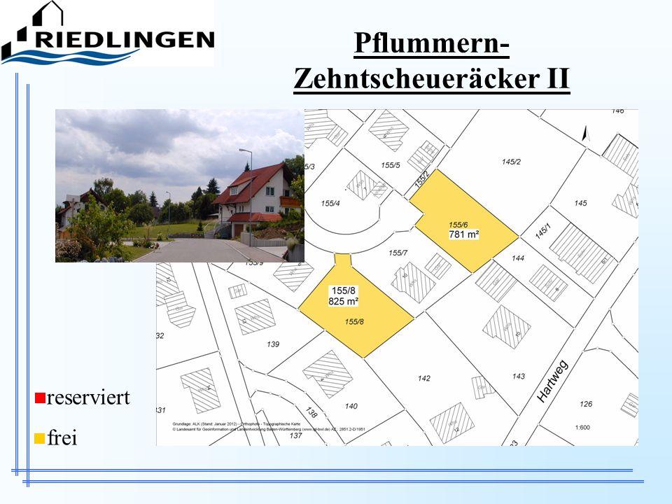 Pflummern-Zehntscheueräcker II