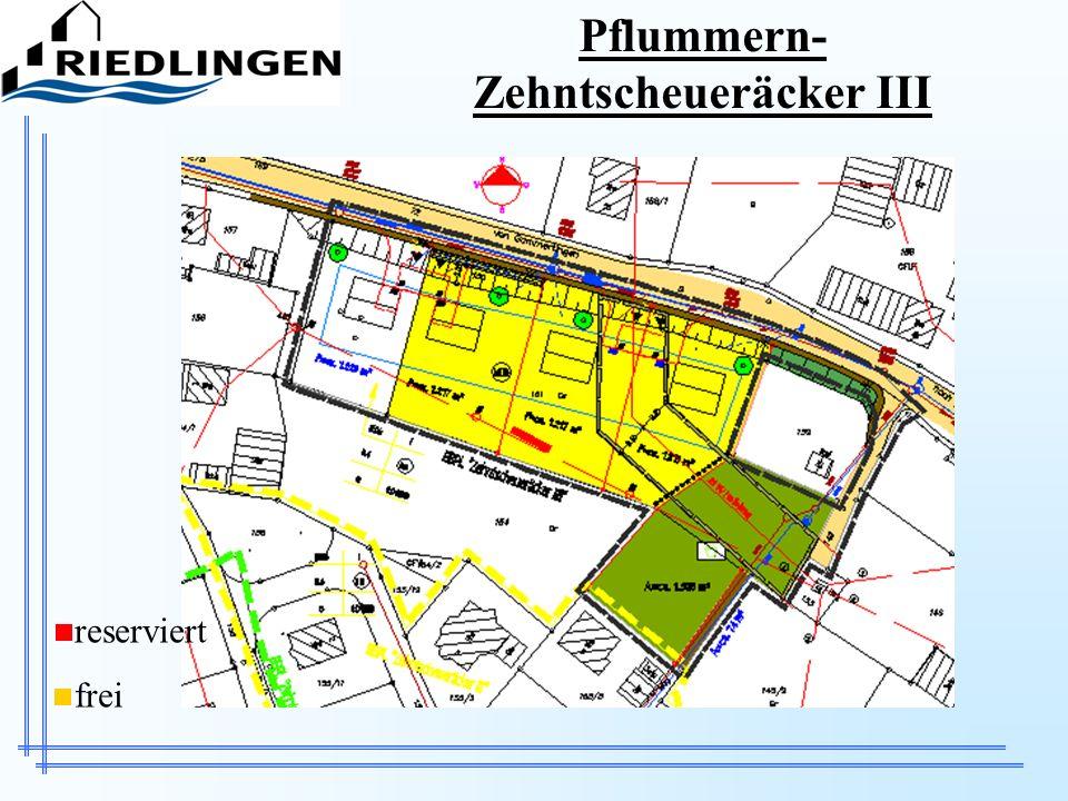 Pflummern-Zehntscheueräcker III