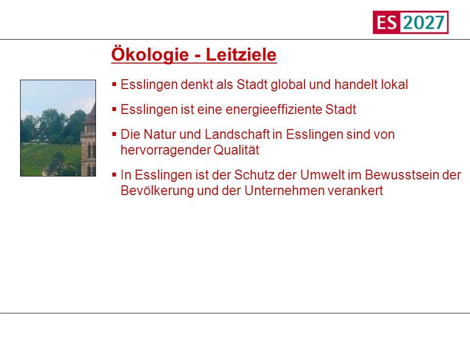 TitelÖkologie - Leitziele. Esslingen denkt als Stadt global und handelt lokal. Esslingen ist eine energieeffiziente Stadt.