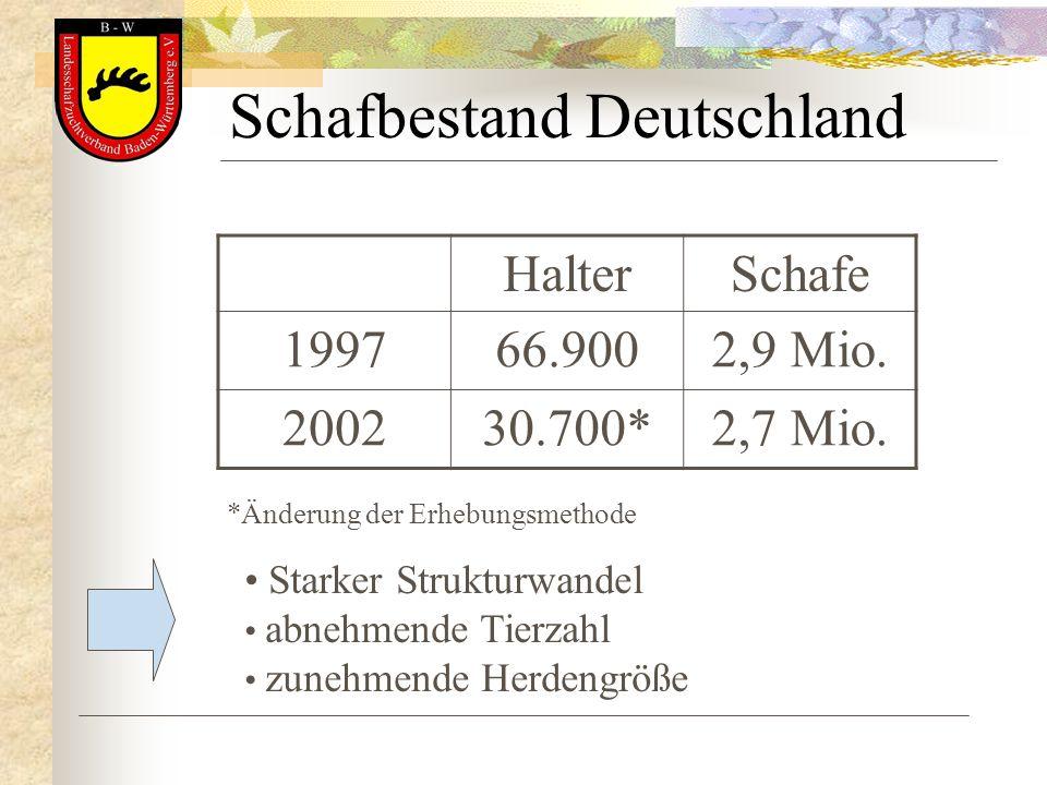 Schafbestand Deutschland