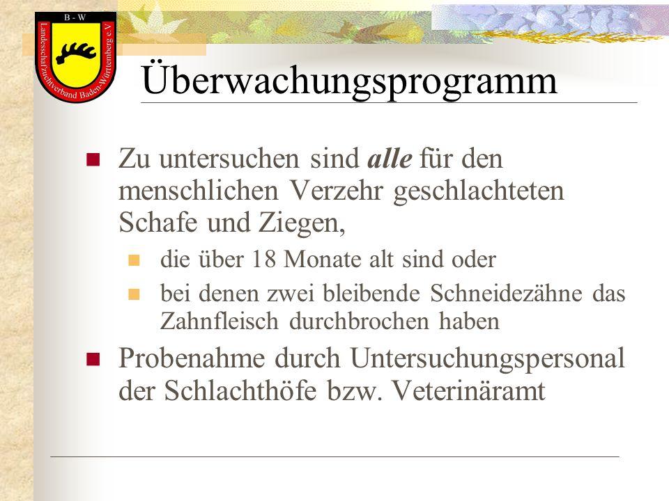 Überwachungsprogramm
