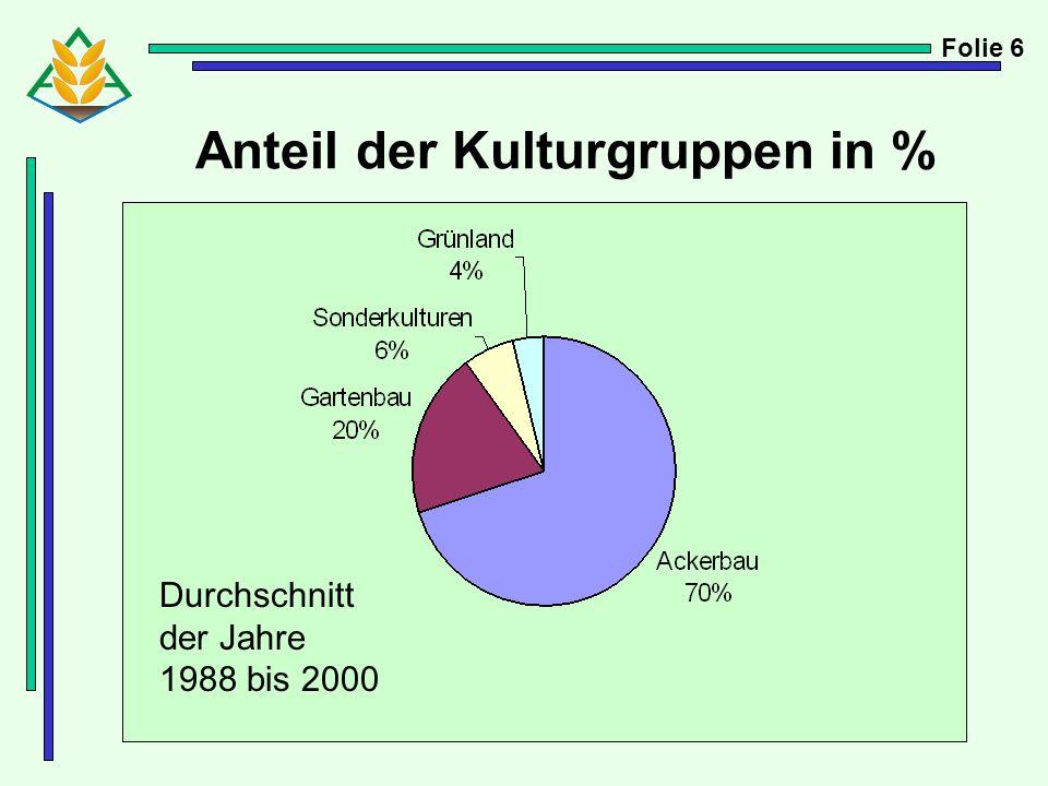 Anteil der Kulturgruppen in %