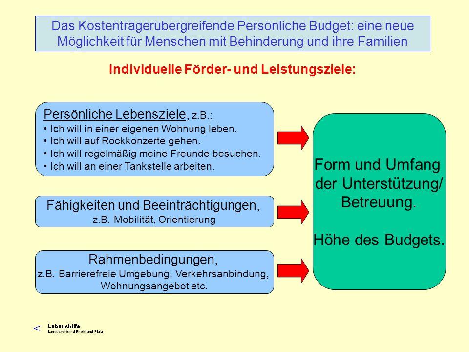 Individuelle Förder- und Leistungsziele: