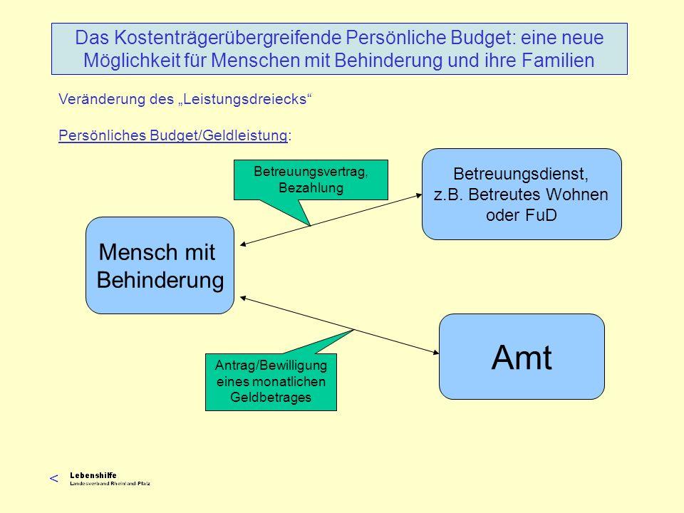 Antrag/Bewilligung eines monatlichen Geldbetrages