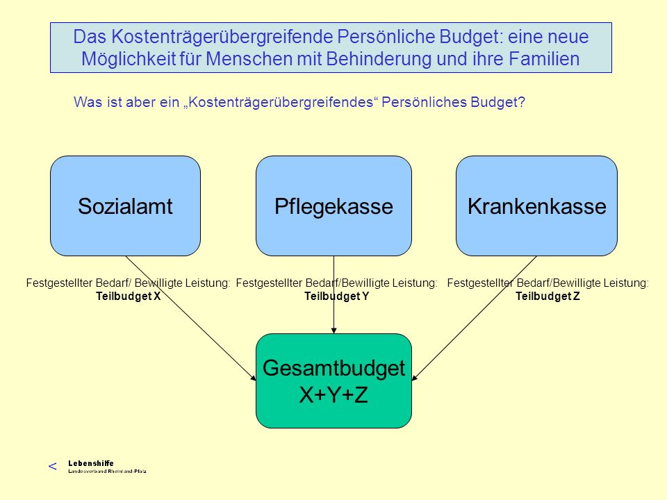 Sozialamt Pflegekasse Krankenkasse Gesamtbudget X+Y+Z