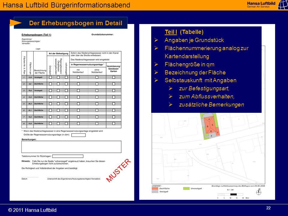 MUSTER Der Erhebungsbogen im Detail Teil I (Tabelle)