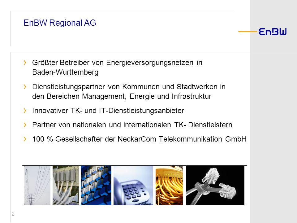 EnBW Regional AG Größter Betreiber von Energieversorgungsnetzen in Baden-Württemberg.