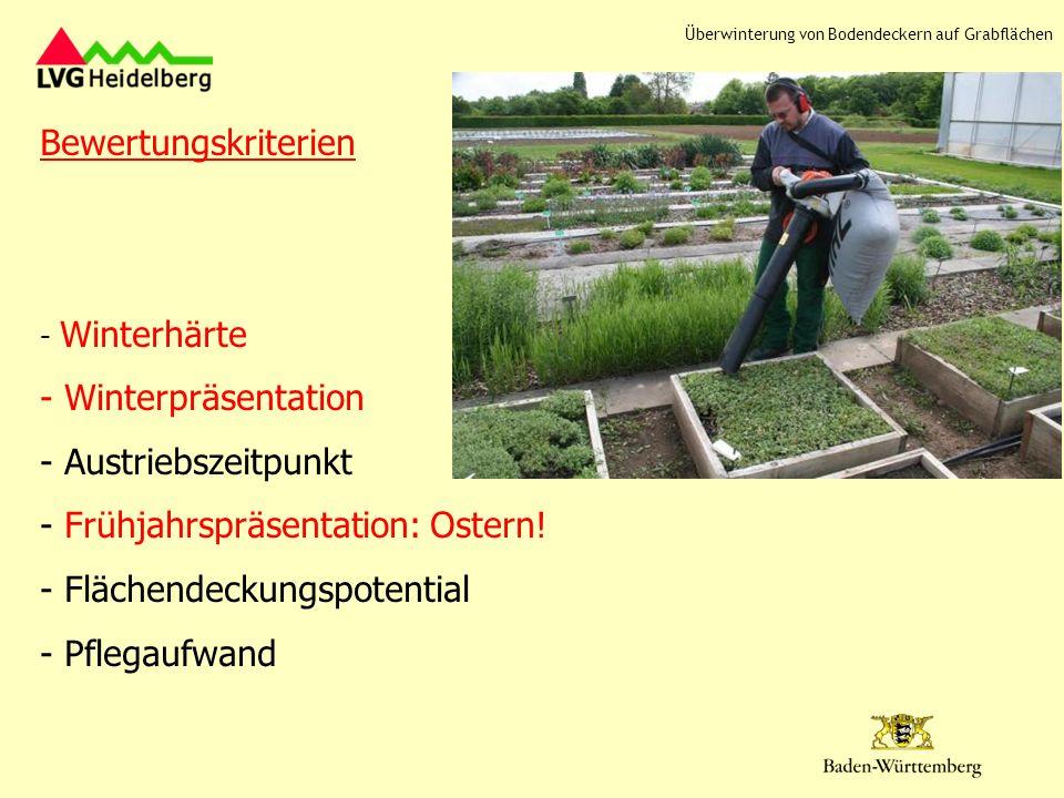 Frühjahrspräsentation: Ostern! Flächendeckungspotential Pflegaufwand