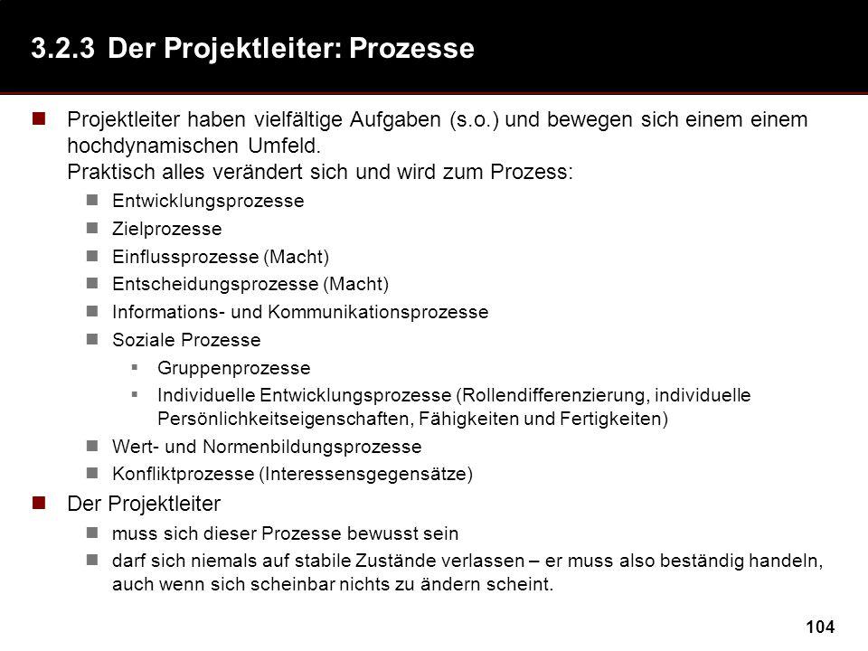 3.2.3 Der Projektleiter: Prozesse