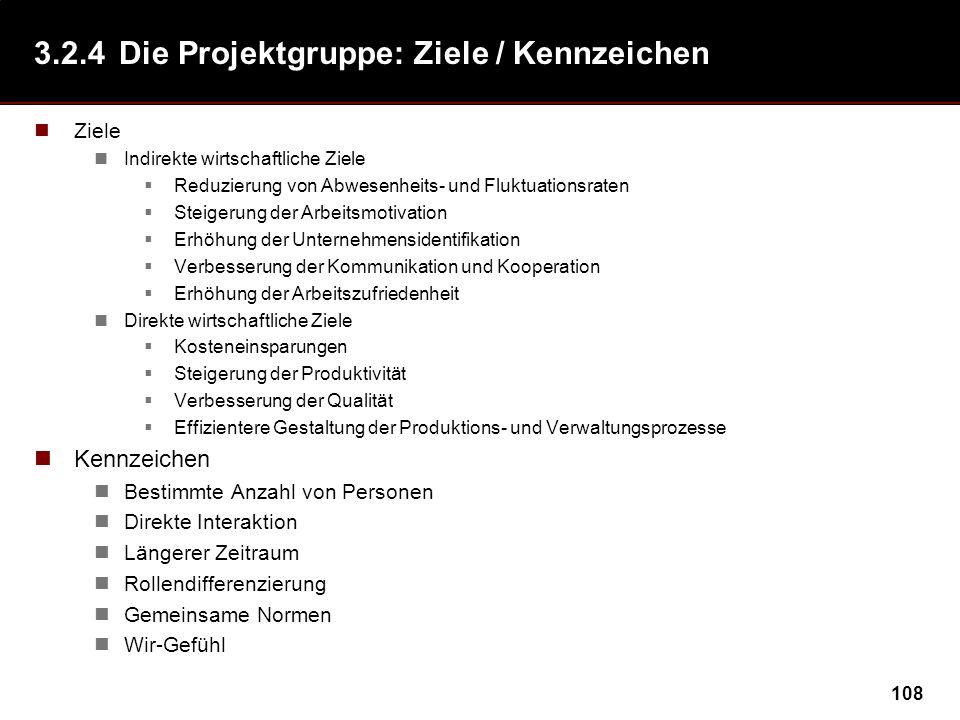 3.2.4 Die Projektgruppe: Ziele / Kennzeichen