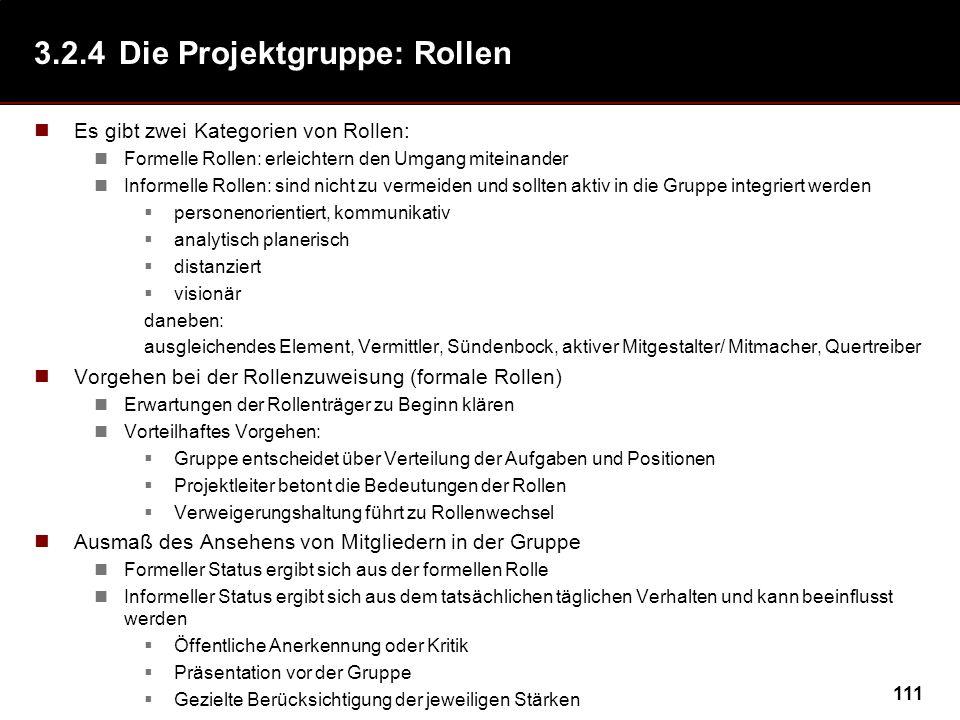 3.2.4 Die Projektgruppe: Rollen