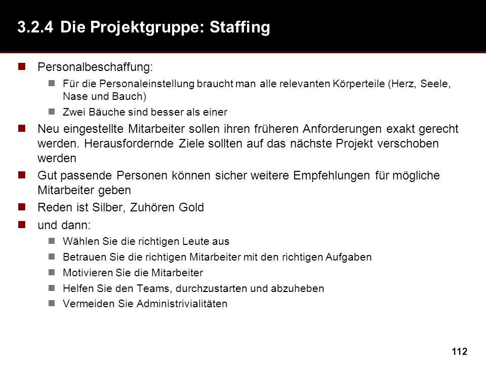3.2.4 Die Projektgruppe: Staffing