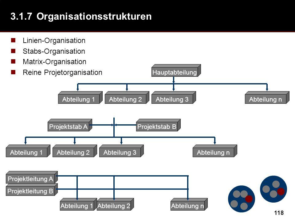 3.1.7 Organisationsstrukturen