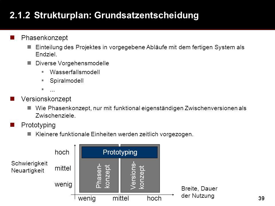 2.1.2 Strukturplan: Grundsatzentscheidung