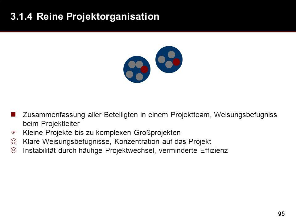 3.1.4 Reine Projektorganisation