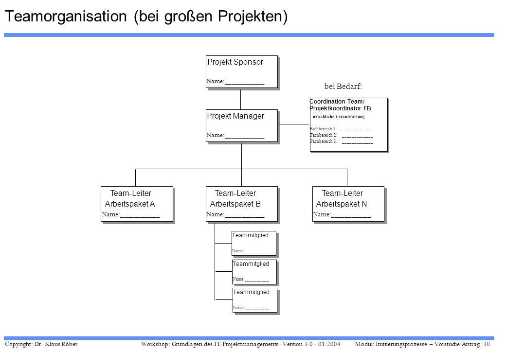 Teamorganisation (bei großen Projekten)