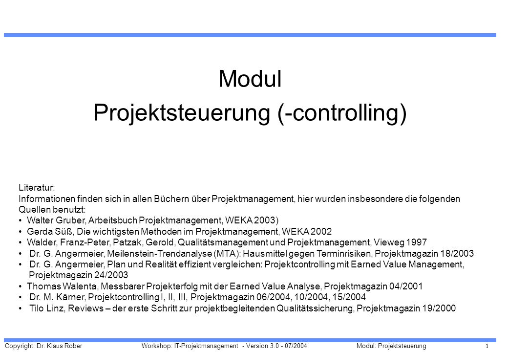 Projektsteuerung (-controlling)