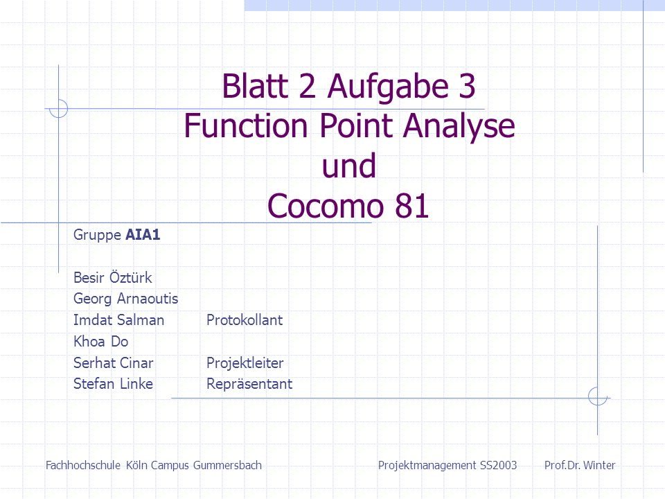Blatt 2 Aufgabe 3 Function Point Analyse und Cocomo 81