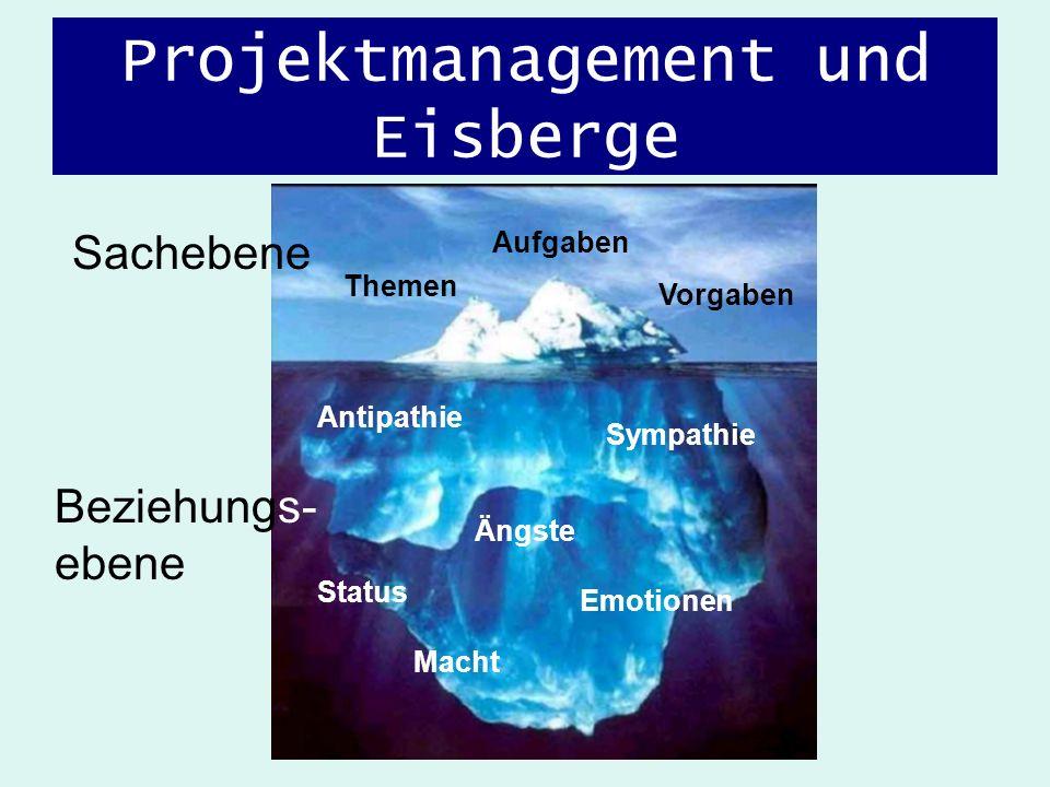 Projektmanagement und Eisberge