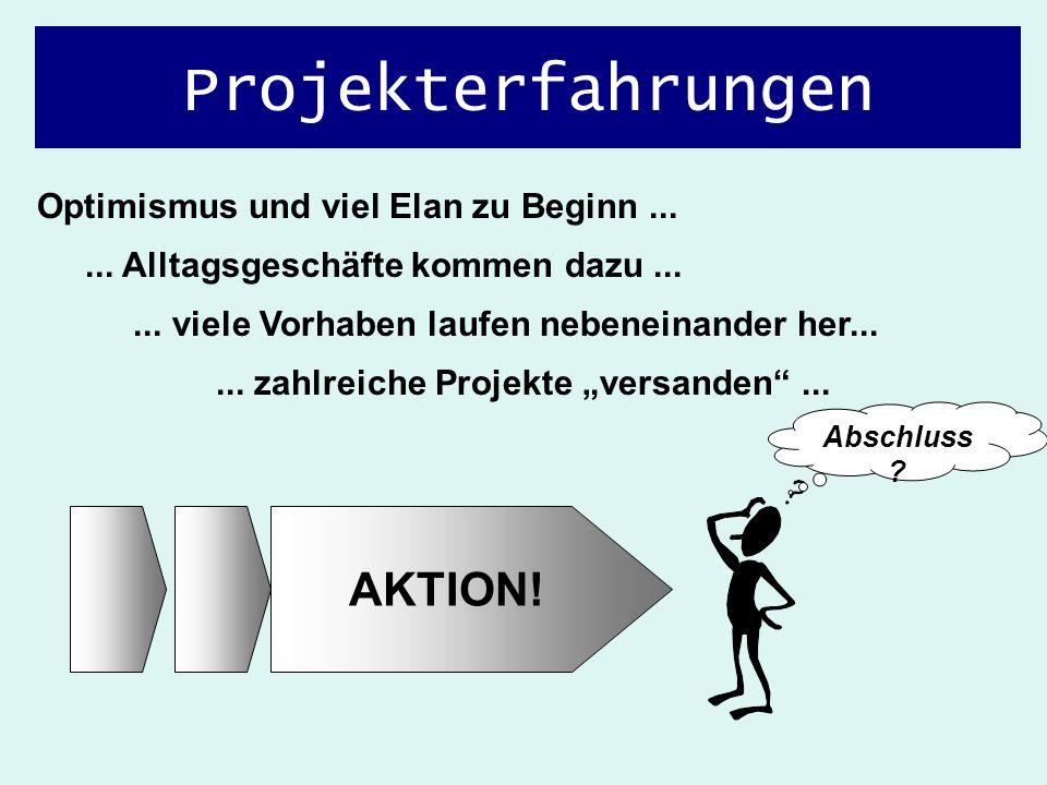 """... zahlreiche Projekte """"versanden ..."""