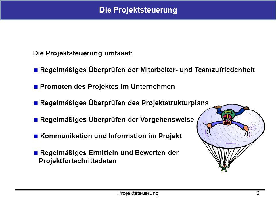 Die Projektsteuerung Die Projektsteuerung umfasst: