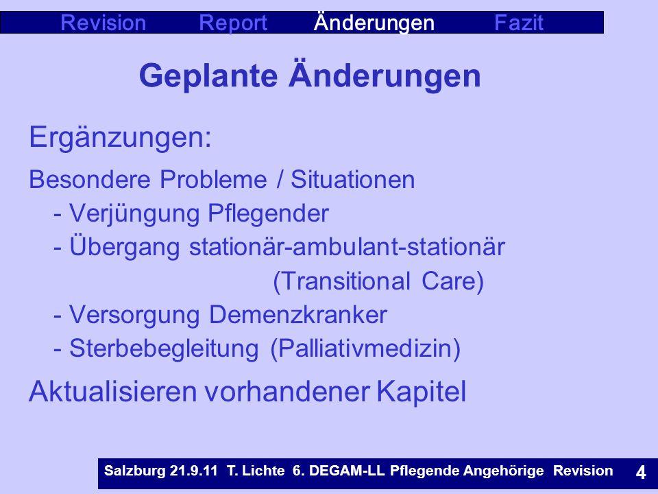 Revision Report Änderungen Fazit