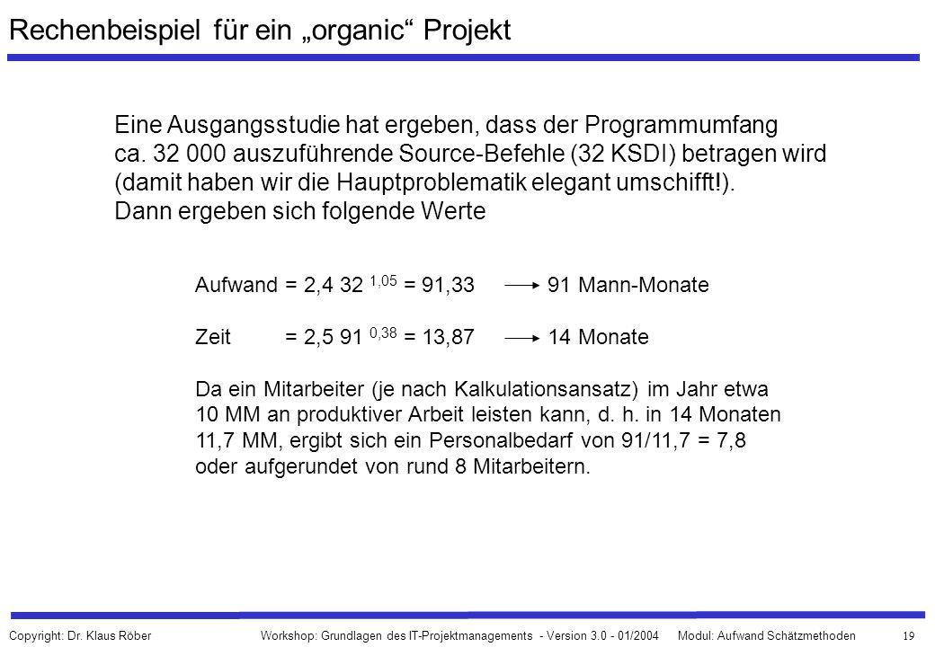 """Rechenbeispiel für ein """"organic Projekt"""