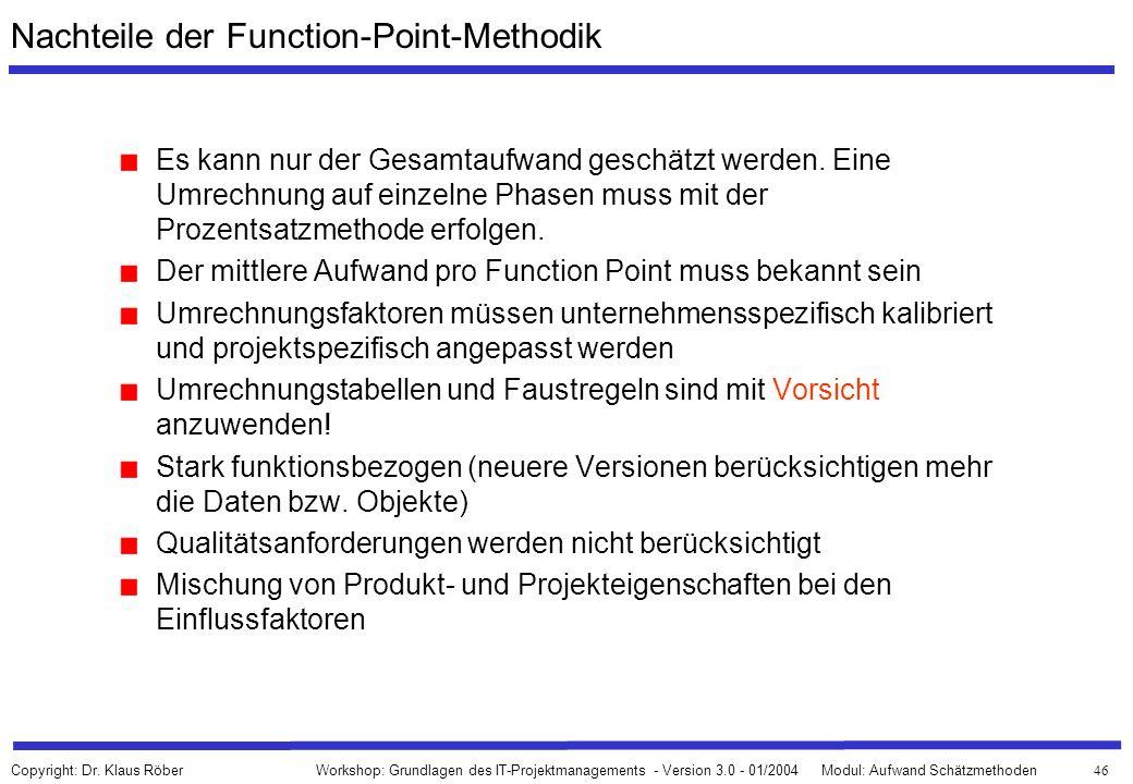 Nachteile der Function-Point-Methodik