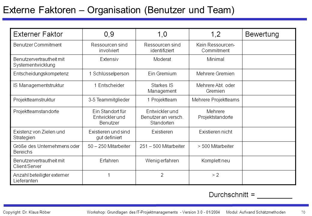 Externe Faktoren – Organisation (Benutzer und Team)