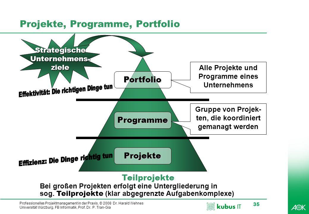 Projekte, Programme, Portfolio