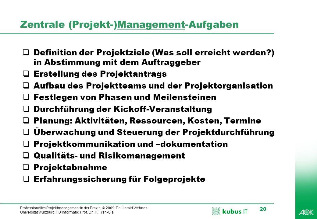 Zentrale (Projekt-)Management-Aufgaben