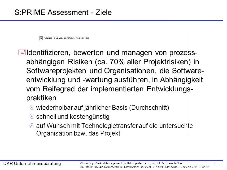 S:PRIME Assessment - Ziele